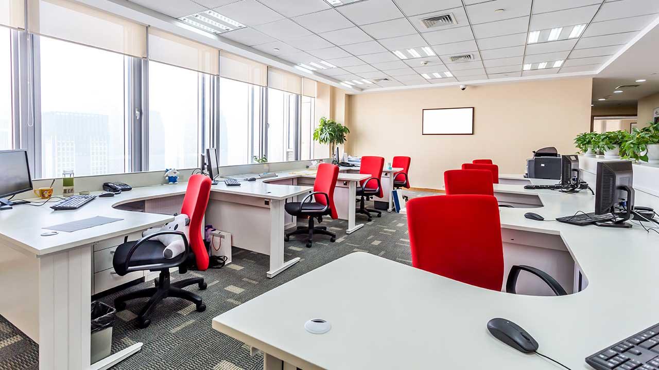 The MindLab Corporate Wellness Suite 1
